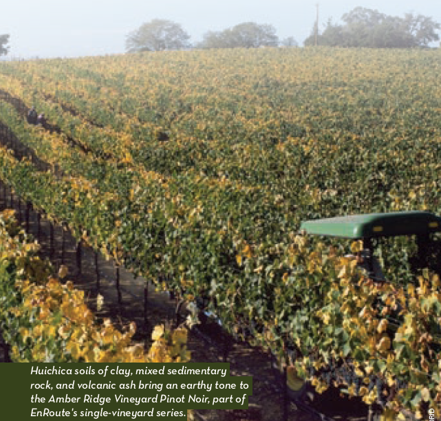 EnRoute Pinot Noirs Featured in The Somm Journal with New High Scores